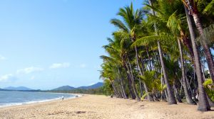 Australia Cairns Palm Cove - photo by Meredith B